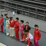 4th world junior wushu 10