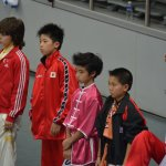 4th world junior wushu 11