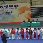 4th world junior wushu 14