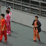 4th world junior wushu 17