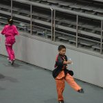 4th world junior wushu 18