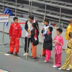 4th world junior wushu 25
