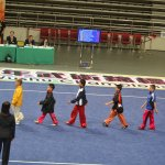 4th world junior wushu 26