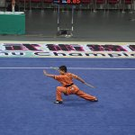 4th world junior wushu 28