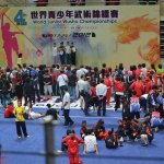4th world junior wushu 29