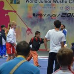 4th world junior wushu 3