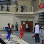 4th world junior wushu 4