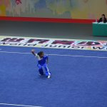 4th world junior wushu 5