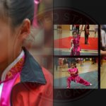 wushu 20 21 2014 uswa cat yearbook helen